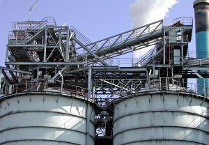 Informate sobre centrales de biomasa con Endesa Educa