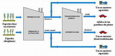 sistemas de biomasa
