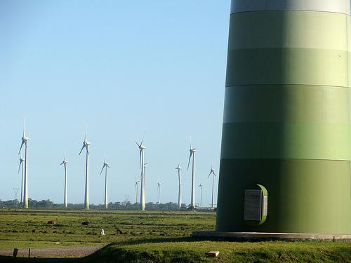 Mas informacion sobre parques eolicos con Endesa Educa